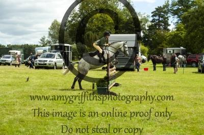 Class 50 – BSPS Working Hunter Pony