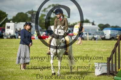 Class 51a – BSPS Mixed Height Novice Working Hunter Pony