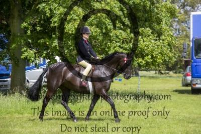 Class 30 – BSPS Ridden Show Pony 138cms