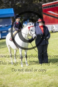 Mini Show Pony Championship