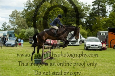 Class 17 – The Stokes Family / Equifest Open Working Hunter