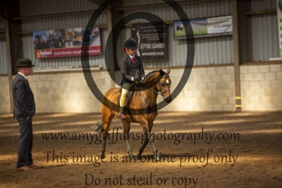 Class 23 – Open Tack & turnout