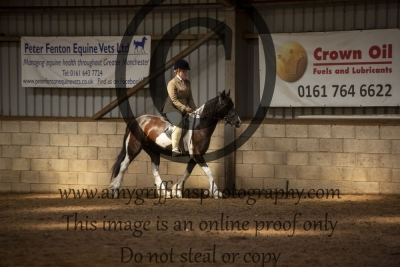 Class 30 – Riding Club Horse or Pony