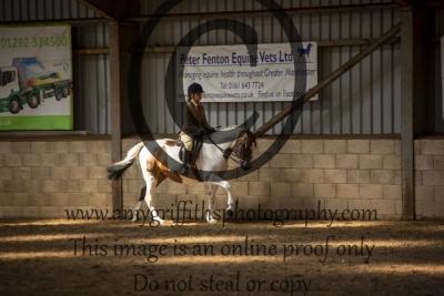 Class 39 – Open Showing (Ponies)