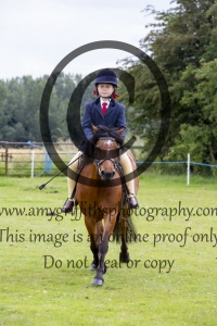 Class 21 – Happy Partners Pony