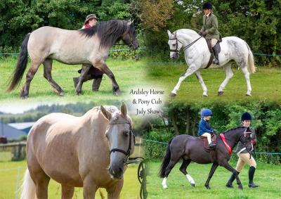 Ardsley Horse & Pony Club – July Show
