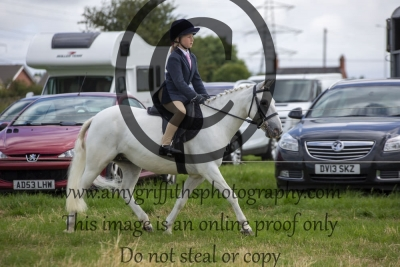 Class 5- Novice Pony