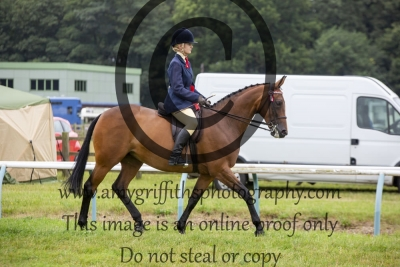 Ridden Horse Championship