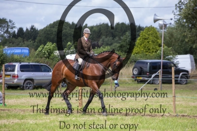 Class 504 – Horse of the Year Show Heavyweight Hunter