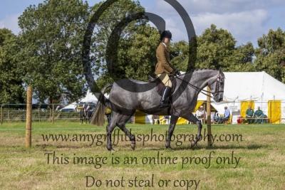 Class 526 – Novice Riding Horse