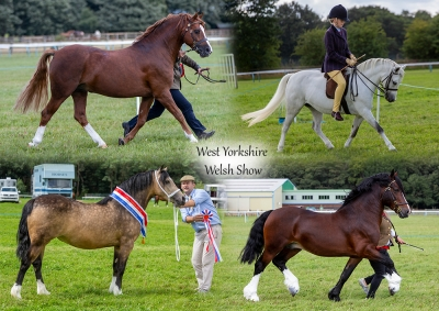 West Yorkshire WPCA Show