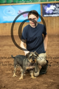Class 16- Female Lorry Dog