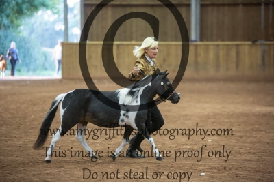 Grand Champion Filly or Mare