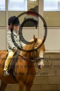 N4 – Bonny Pony