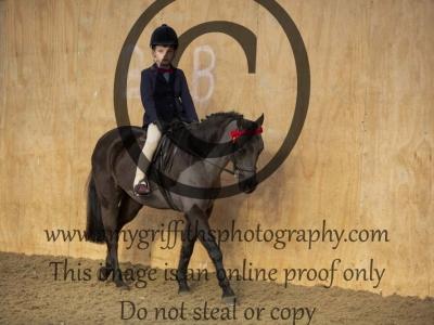 Class 58 – Novice or Nervous Rider