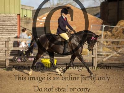 Class 129 – Novice Ridden Show Horse exc 148cm