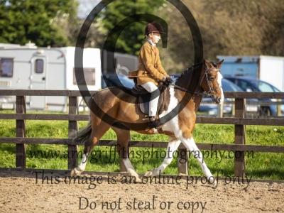Class 131 – Novice Ridden Show/Hunter Pony