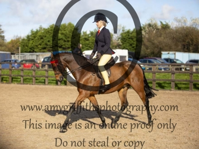 Class 138 – Ridden Show Pony/ Hunter Pony not exc 138cm