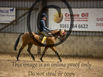 Class 32- Show Pony or Show Hunter Pony