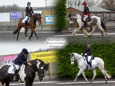 Manor Grange Stud BD Quest & Unaffiliated – 25th January 2020