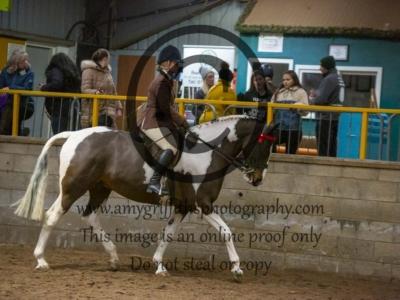 Class 33 – Ridden Plaited Horse