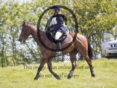 Class 5: Novice Horse