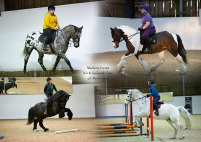 Blueberry Events Pole & Grid Work Clinic – 5th March 2020