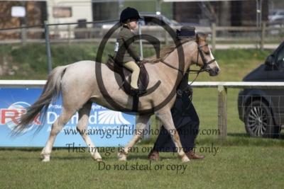Class 54 – Lead Rein Pony