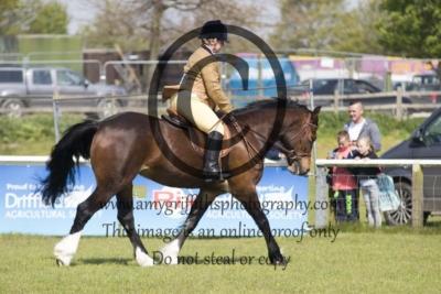 Class 56 – Pre-Novice Pony