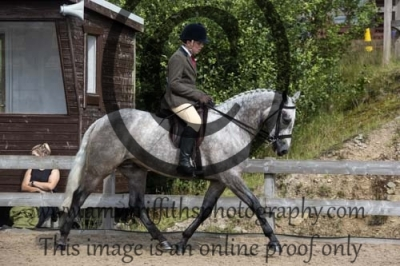 Class 29 – Riding Club Horse or Pony