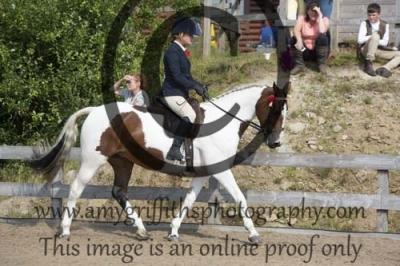 Class 31 – Senior Equitation