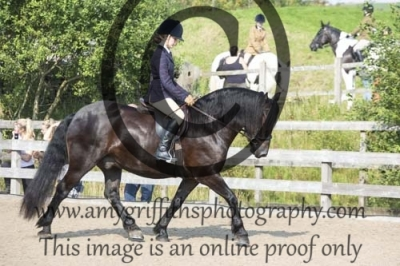 Class 35a – Novice Showing – Ponies