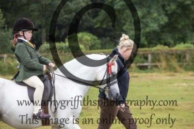 Class 2- Bonny Pony