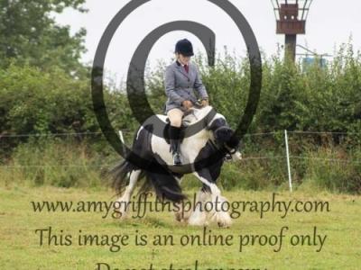 Class 7- Ridden Pony