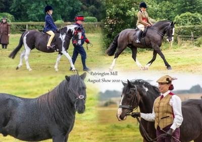 Patrington Mill Horse Show 16.8.2020