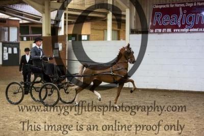 Class 16 – Open Hackney Pony