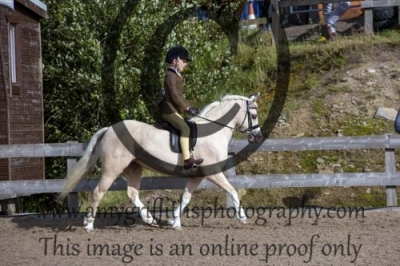 Class 29- Riding Club Horse & Pony