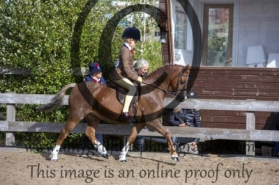 Class 30 – Hunter Pony