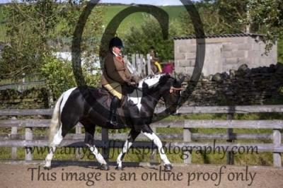 Class 31- Senior Equitation