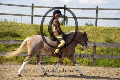 Class 30- First Ridden Equitation