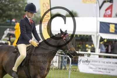 Class 25- BSPS Mixed Height Open Show Pony