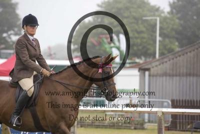 Class 34- Racehorse to Riding Horse