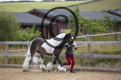 Class 6- Coloured Pony