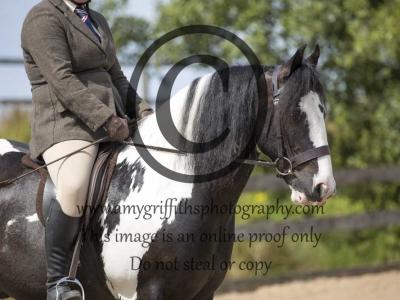 Class 45- Senior Equitation