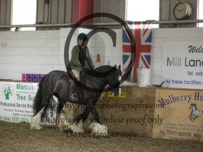 Class 33- Equitation