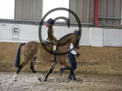 Class 41- Show Pony/ Show Hunter Pony